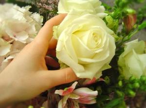 florist 5